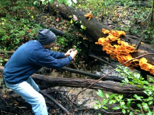 Chef Eric Garcia Discovers Chicken of the Woods